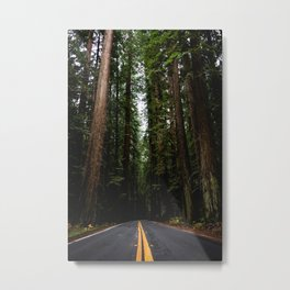 The Road to Wisdom - Nature Photography Metal Print