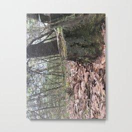 Just A Tree Stump Metal Print