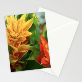 Exotic Red and Yellow Tropical Hawaiian Flowers Stationery Cards