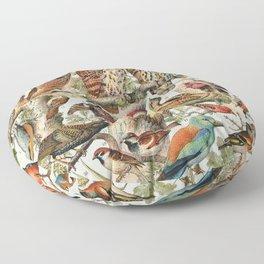 Adolphe Millot - Oiseaux espèces utiles 02 - French vintage ornithology poster Floor Pillow