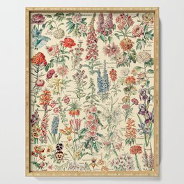 Vintage Floral Drawings // Fleurs by Adolphe Millot XL 19th Century Science Textbook Artwork Serving Tray