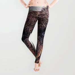 American Bison  -  A Living National Treasure Leggings