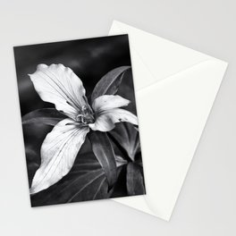 Trillium - Black and White Stationery Cards