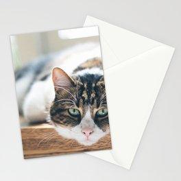 Cat by Nathan Fertig Stationery Cards