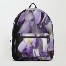 Close Up Of Lavender Wisteria Blossom Backpack