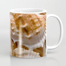 Seashells collection background Coffee Mug