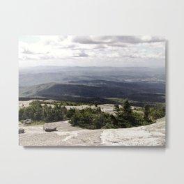A Summer View Metal Print