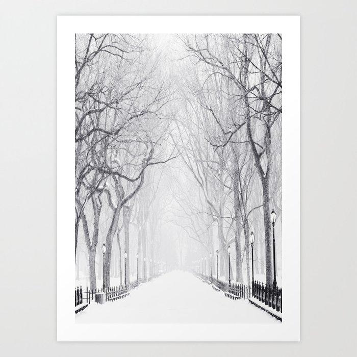 Snowy Park Kunstdrucke