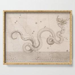 Johann Bayer - Uranometria / Measuring the Heavens (1661) - 14 Serpens / The Snake Serving Tray