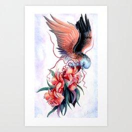 Bar-shouldered Dove Art Print