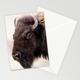 Bison Looks Annoyed Stationery Cards