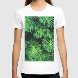 Monstera leaf jungle pattern - Philodendron plant leaves background T-shirt