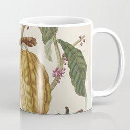 Maria Sibylla Merian Fruits Cocoa Coffee Mug