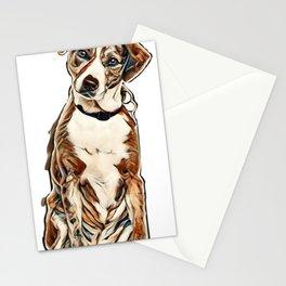 Mixed-breed dog sitting, isolated        - Image Stationery Cards