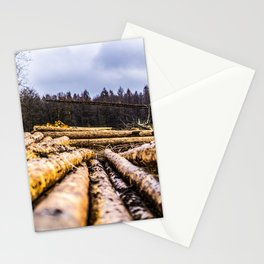 Poltery Site (Wood Storage Area) After Storm Victoria Möhne Forest 6 Stationery Cards