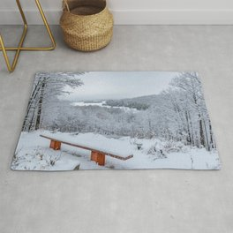 Winter view of Lake Palmerston from the Hill landscape Rug