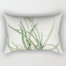 Tofields asphodel  from Les liliacees (1805) by Pierre Joseph Redoute (1759-1840) Rectangular Pillow