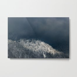 Darkness and sun over snowy spruce forest Metal Print