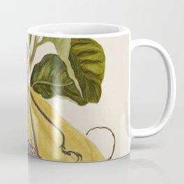 Maria Sibylla Merian Lemon Coffee Mug