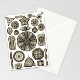 Ernst Haeckel Diatoms in Vintage Brown Stationery Cards