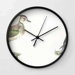 Lapwing and Duck by Johan Teyler (1648-1709) Wall Clock