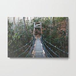 Bridge in Pisgah National Forest, North Carolina Metal Print