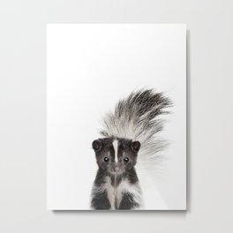 Baby Skunk Metal Print