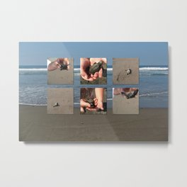 Releasing Baby Turtles into the Pacific Ocean, Mexico Metal Print