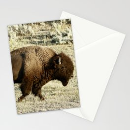 Bison in Yellowstone National Pa Stationery Cards