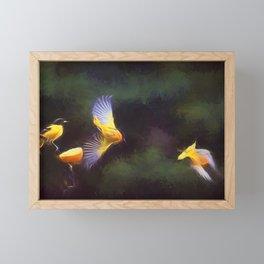 Orioles in Flight Framed Mini Art Print