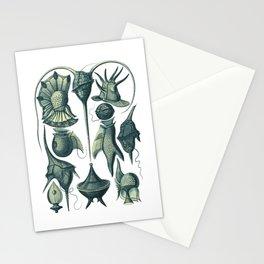 Ernst Haeckel Peridinea Plankton Algae Teal Stationery Cards