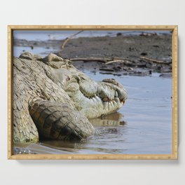 African Nile Crocodile Face, Wildlife, Ethiopia, Africa Serving Tray