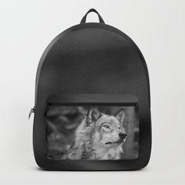 Beautiful wolf Backpack