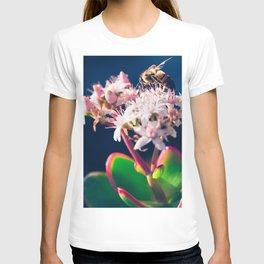 Crassula ovata Jade Flowers and Honey Bee Kula Maui Hawaii T-shirt