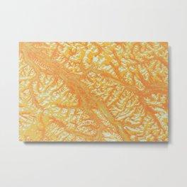 Auburn Sunrise - California Earth Art Metal Print