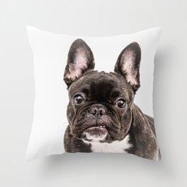 French bulldog portrait Throw Pillow
