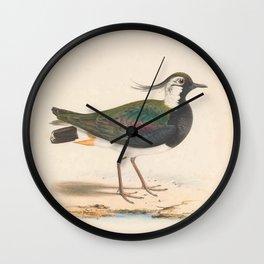 Crested Lapwing, vanellus cristatus5 Wall Clock
