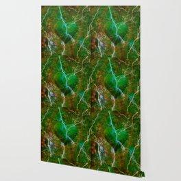 Tumultuous Love - Forest Wallpaper