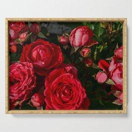 red rosebush deux Serving Tray