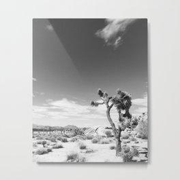 Joshua Tree Nat'l Park Metal Print