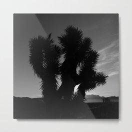 Joshua Tree Sunrise II Metal Print