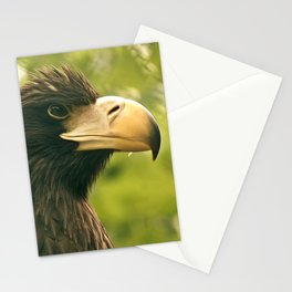 Golden Eagle Stationery Cards