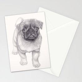 Pug Dog - Animal Pet Pencil Drawing  Four Legged Freind Stationery Cards