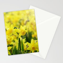 Bright Yellow Narcissus Stationery Cards