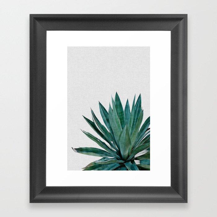 Agave Cactus Gerahmter Kunstdruck