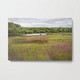 River with Purple Flowers Metal Print