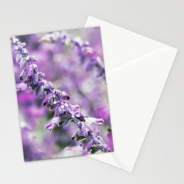 Longwood Gardens Autumn Series 160 Stationery Cards