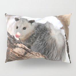 North American Opossum in Winter Pillow Sham