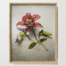 Still life with red columbine flower Serving Tray