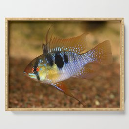Ramirezi cichlid Serving Tray